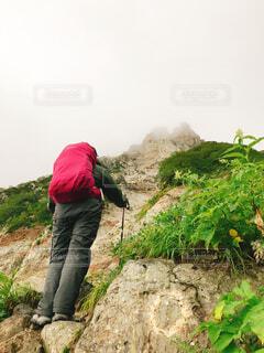 ひたすら登るの写真・画像素材[1720238]