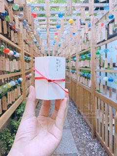 氷川神社 縁結び玉の写真・画像素材[1723138]