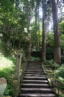 山寺の階段の写真・画像素材[1721522]