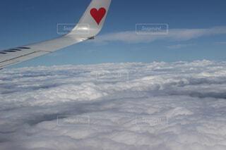 ハートの翼の写真・画像素材[137250]