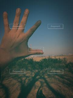 シワシワの手の写真・画像素材[1740539]
