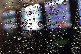 雨粒の写真・画像素材[1725231]