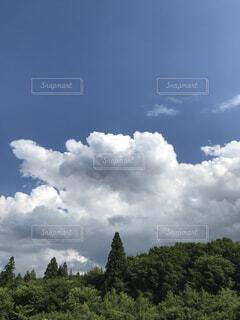 空には雲のグループの写真・画像素材[1726171]