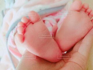 赤ちゃんのあんよの写真・画像素材[1729413]
