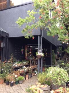 カフェ&雑貨ショップのエントランスの写真・画像素材[1729748]