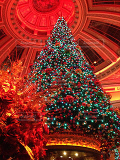 クリスマス ツリーの写真・画像素材[1741156]