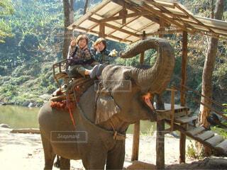 タイ チェンマイ 像の写真・画像素材[1730028]