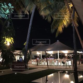椰子の木に囲まれた屋外バーの写真・画像素材[1731491]