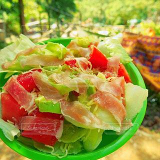 食べ物とグリーン サラダのプレートの写真・画像素材[1735083]