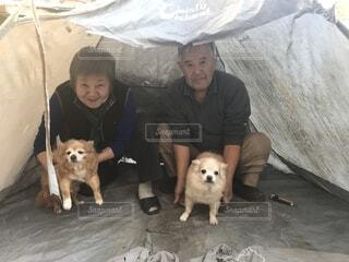 カメラにポーズ犬を持っている人の写真・画像素材[1733604]