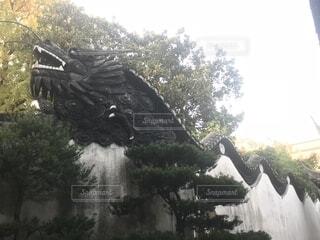 龍の瓦🐉の写真・画像素材[1736916]