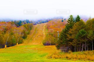 山と紅葉の写真・画像素材[1733951]