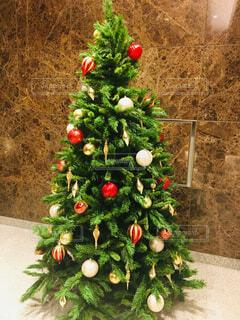 クリスマス ツリーの写真・画像素材[1746294]