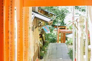 伏見稲荷の鳥居の写真・画像素材[1808976]