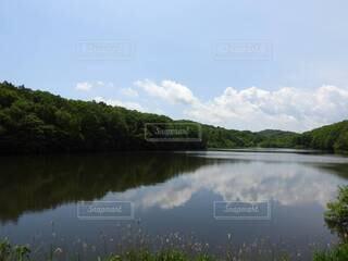 透き通る湖の写真・画像素材[4770069]