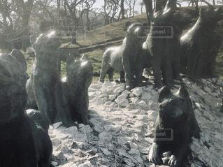 樺太犬慰霊像の写真・画像素材[1800675]