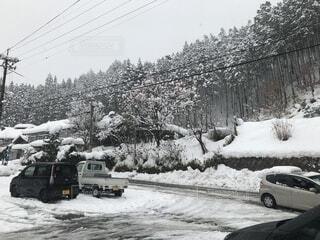 雪に覆われた車の写真・画像素材[1736740]