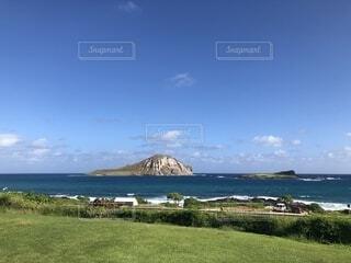 ハワイ 水族館がある海岸の写真・画像素材[1736900]
