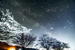雪に覆われた野原のクローズアップの写真・画像素材[2270237]