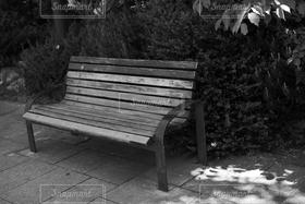風景,公園,森林,屋外,モノクロ,白黒,椅子,いす