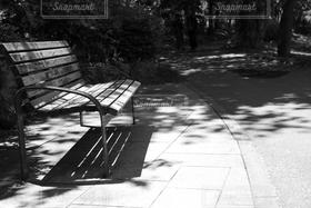 風景,公園,モノクロ,白黒,影,椅子,いす