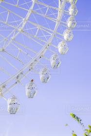 大阪,白,青空,観覧車,白い,遊園地,ゴンドラ,シースルー,エキスポシティ,大阪ホイール,オオサカホイール,OSAKA WHEEL,I