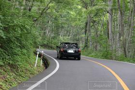 自然,アウトドア,夏,乗り物,森,車,大山