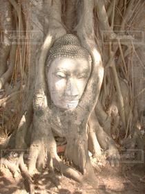 世界の絶景,世界遺産,タイ,東南アジア,バックパッカー,仏跡
