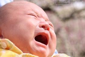 子ども,1人,公園,屋外,子供,赤ちゃん,こども,ベビー,泣き顔,泣く,必死,泣いている