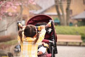子ども,家族,2人,自然,風景,春,後ろ姿,女の子,赤ちゃん,ベビー,ベビーカー,お手伝い,押す,子守り