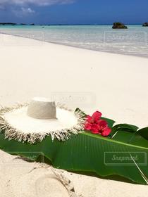 自然,風景,海,花,夏,ビーチ,ハイビスカス,帽子,沖縄,beach,ハット