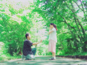 女性,男性,恋人,2人,学生,10代,20代,自然,風景,空,夏,木,緑,葉