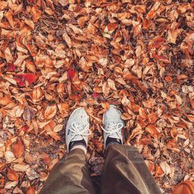 自然,秋,足元,足,落葉