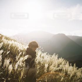 男性,自然,風景,光,ススキ