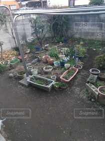 庭,植木鉢,プランター,家庭菜園,家庭,ブロック,冬の外,物干しさお