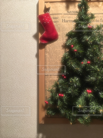 冬,室内装飾,緑,赤,クリスマスツリー