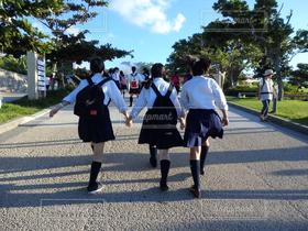 女性,友だち,3人,学生,後ろ姿,通学,下校,制服,女子高生,JK,登校