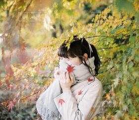 女性,1人,モデル,20代,ファッション,自然,風景,秋,冬,紅葉,季節,人物,人,寒い