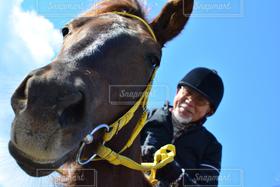 男性,1人,動物,青空,馬,日本,淡路島,ローアングル,乗馬
