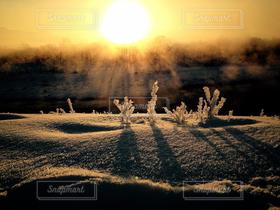 冬,雪,朝日,川,雪景色,朝,1月,冷え込み