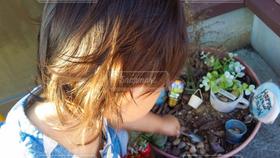 子ども,植木鉢,プランター,遊び,2歳,砂遊び,外遊び,土いじり,2歳児,砂いじり