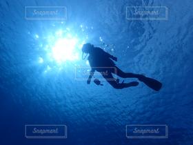 海,水中,ダイビング,太陽の光