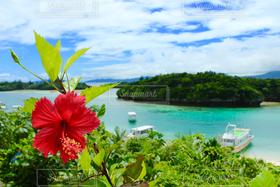海,絶景,世界の絶景,ハイビスカス,沖縄,常夏,絶景!