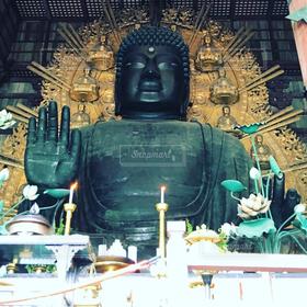 奈良,大仏,仏教,仏像,東大寺,Buddha,奈良の大仏,盧遮那仏,座像