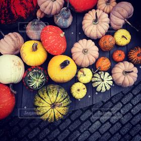 秋,カラフル,ハロウィン,Halloween,10月,南瓜,カボチャ