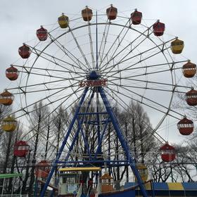 観覧車,遊園地,テーマパーク,むさしの村