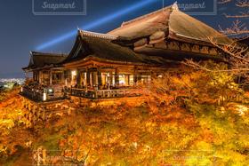 自然,風景,アウトドア,空,秋,清水寺,紅葉,京都,もみじ,夜空と夜景